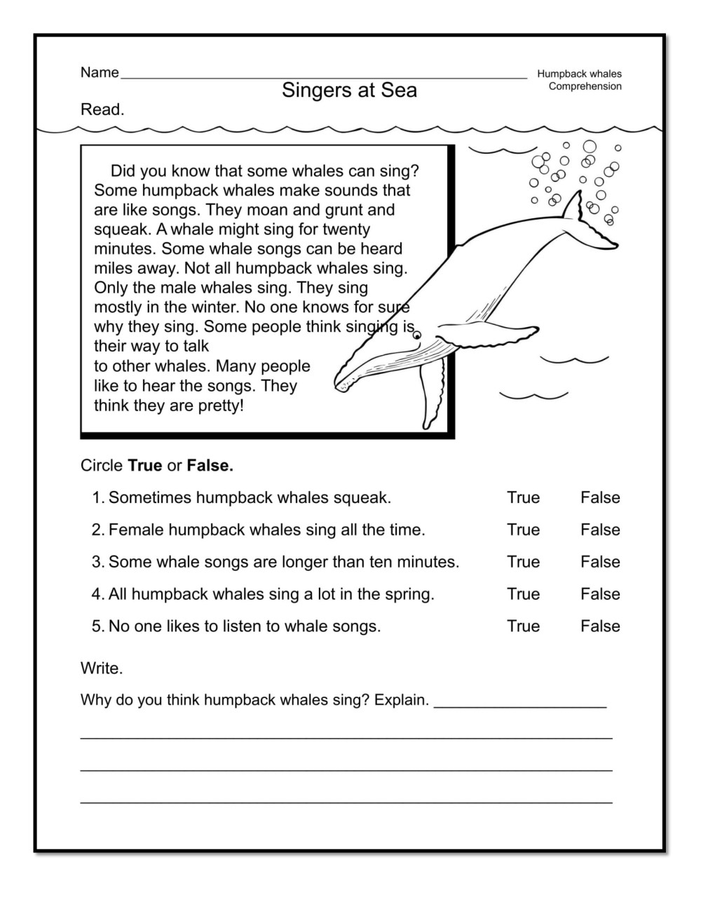 medium resolution of 12 Good Examples Of 1st Grade Worksheets Free Download   Worksheet Hero
