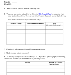 Second Grade Food Groups Worksheets   Printable Worksheets and Activities  for Teachers [ 1650 x 1275 Pixel ]