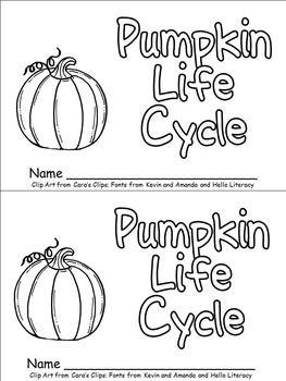 15 Best Images of Pumpkin Life Cycle Worksheet