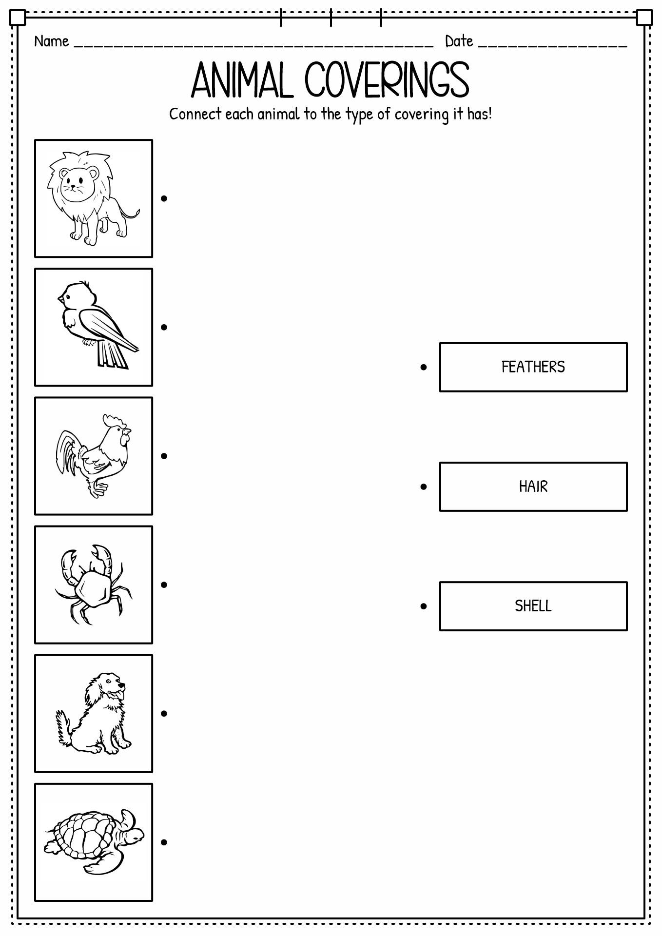 15 Best Images of Classifying Animals Worksheets Preschool