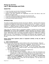 12 Best Images of Microscope Lab Worksheet