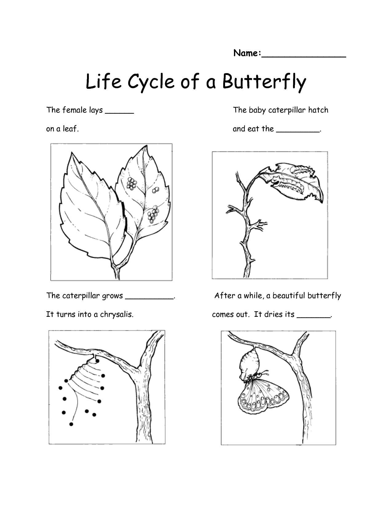 Worksheet Understanding Life Changes