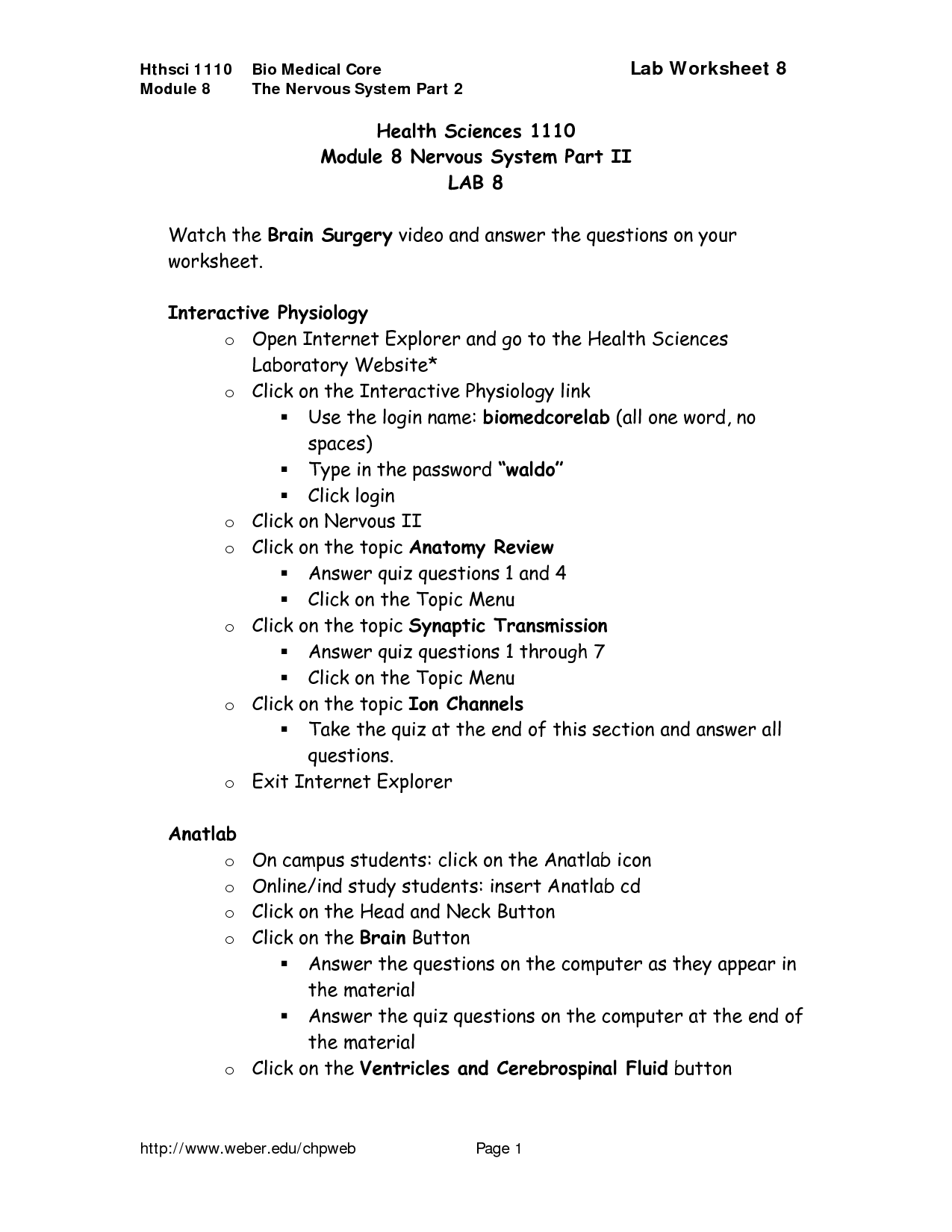Nervous System Coloring Worksheet Answers