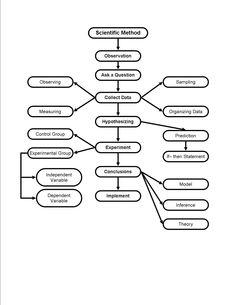 12 Best Images of Scientific Method Worksheet For Teaching