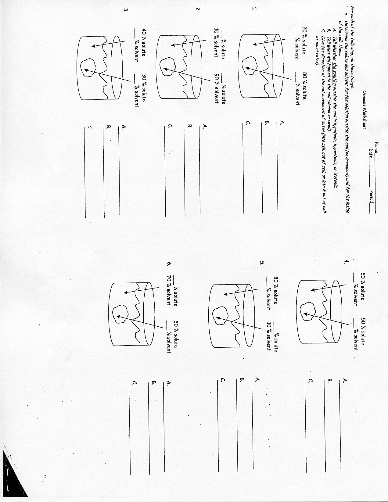 Diffusion Osmosis And Active Transport Worksheet Answers