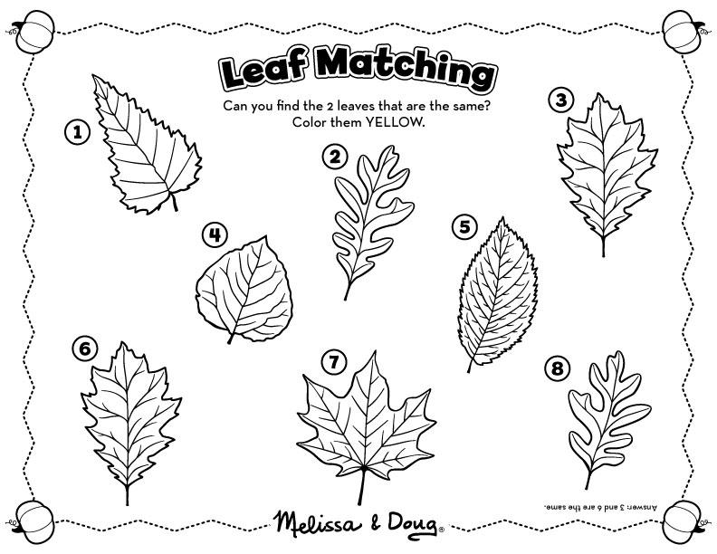 10 Best Images of Leaf Worksheets For Preschoolers