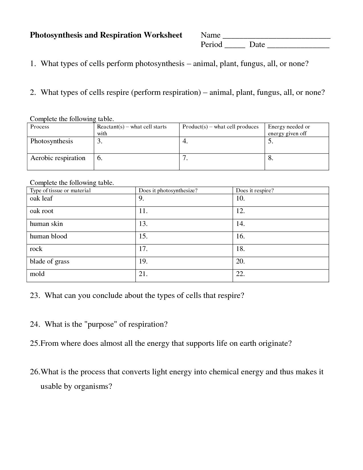 Cell Biology Worksheet High School