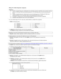 15 Best Images of Plant Photosynthesis Worksheet ...