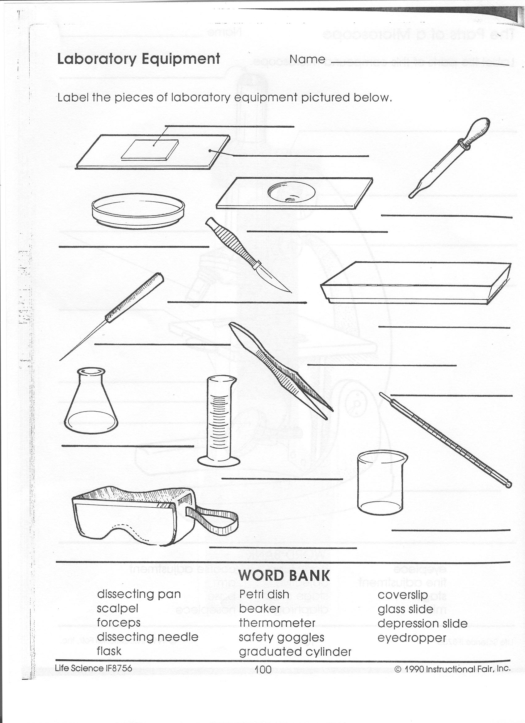 Safety Lab Equipment Worksheet