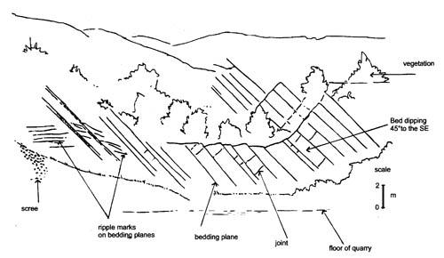 6 Best Images of Weathering Erosion Worksheets Grade 4