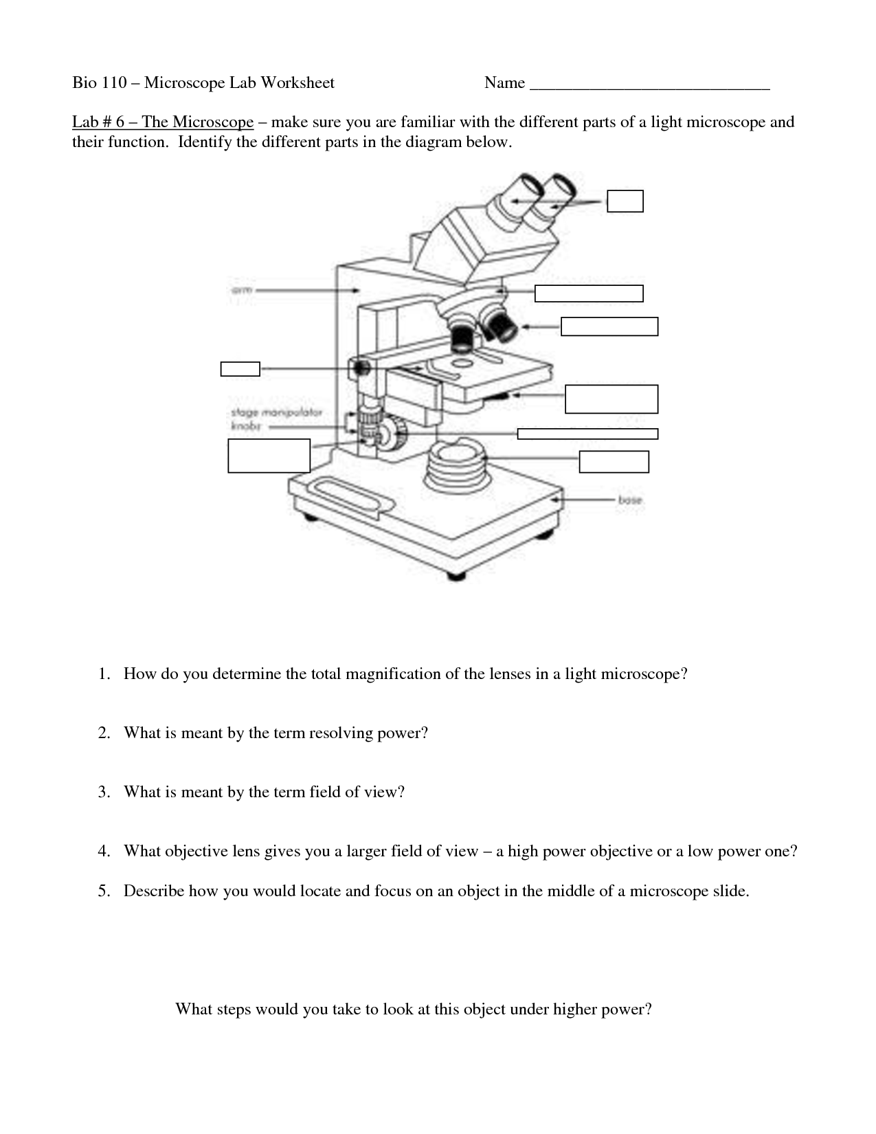 Field Of View Microscope Worksheet