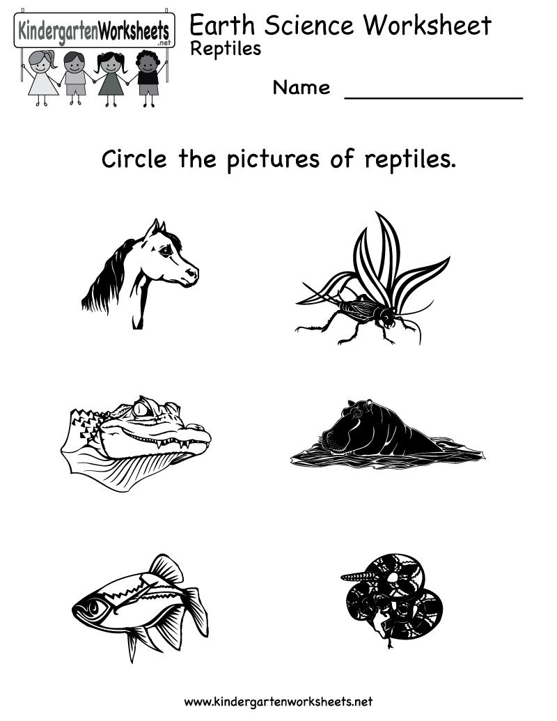 14 Best Images of Science Worksheets For Kindergarten