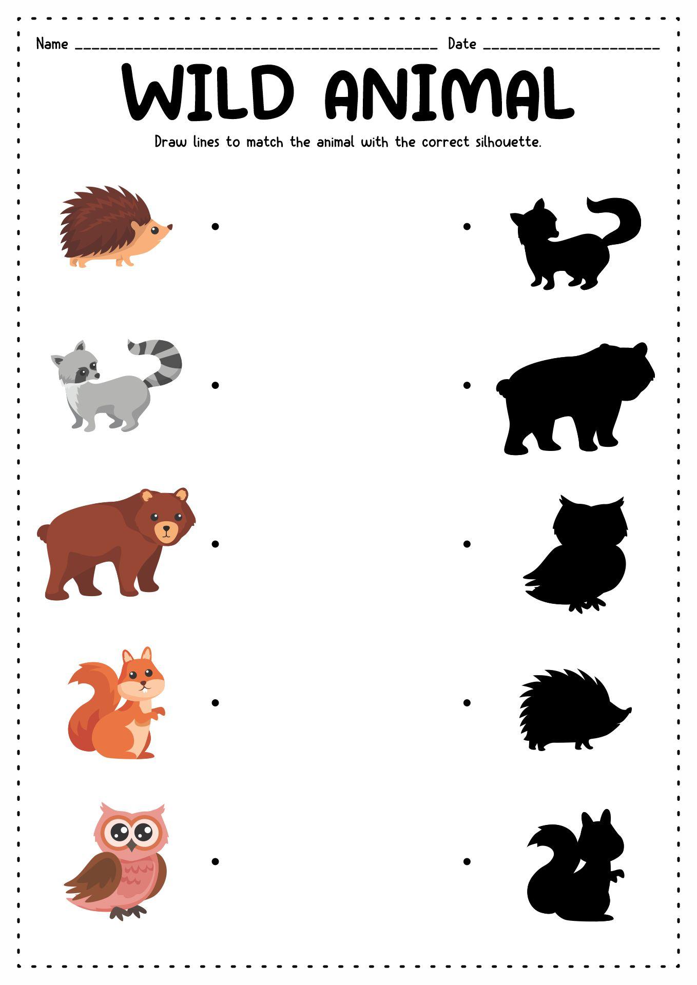 13 Best Images of Animals Kindergarten Worksheet