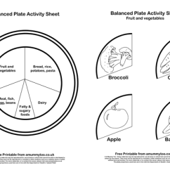 Blank Food Plate Diagram Wiring 12v Caravan Fridge My New Era Of 9 Best Images Worksheets Healthy Eating Myplate Print Out