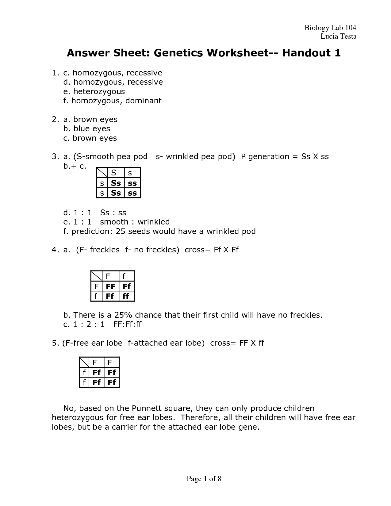 33 Genetics Worksheet Answers Key