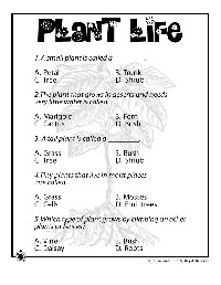 17 Best Images of Hidden Meaning Puzzles Worksheets