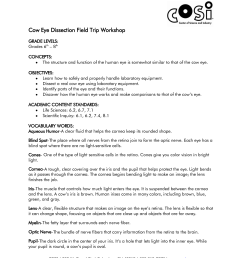 Perch Dissection Lab Worksheet   Printable Worksheets and Activities for  Teachers [ 1650 x 1275 Pixel ]