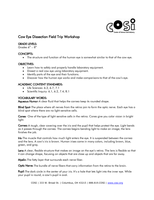 small resolution of Perch Dissection Lab Worksheet   Printable Worksheets and Activities for  Teachers