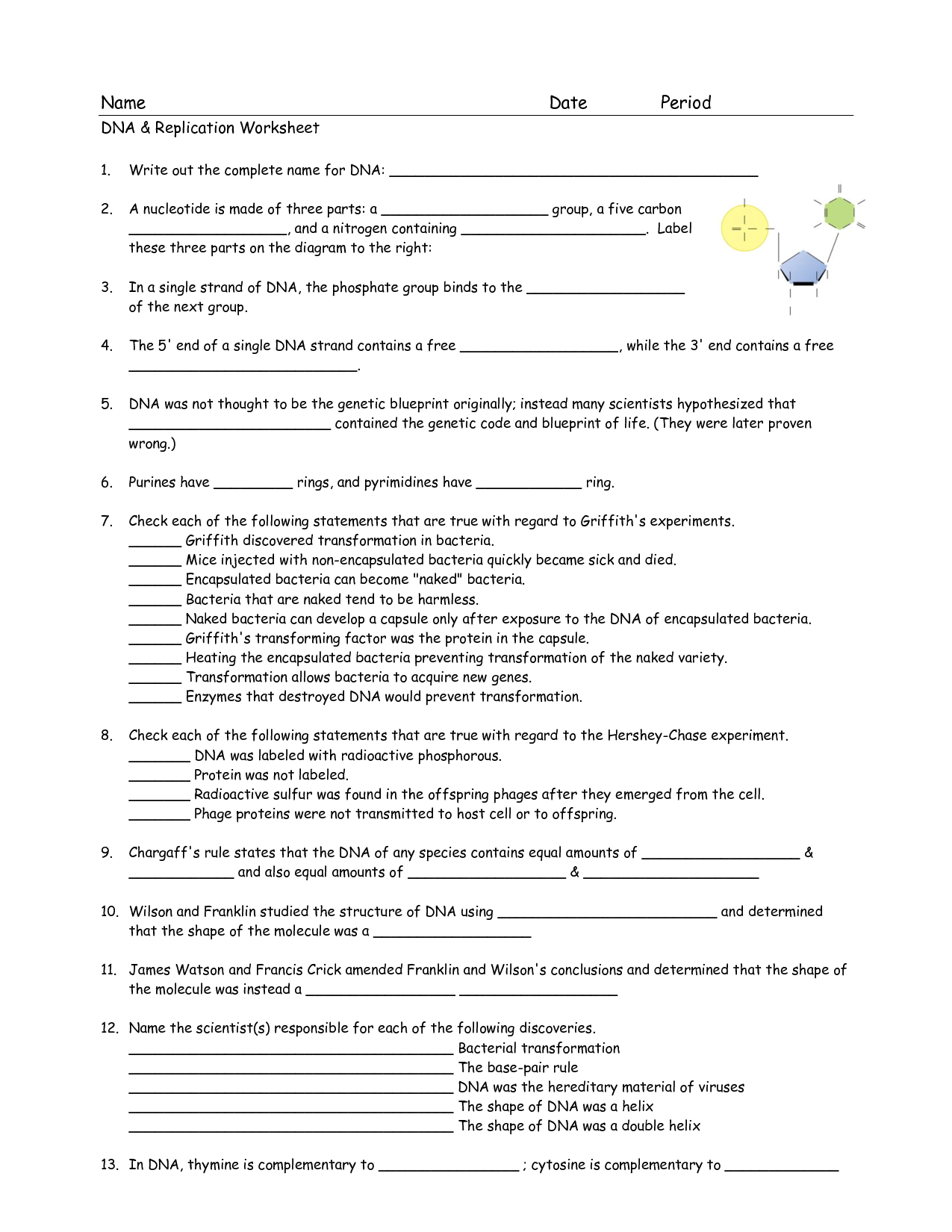 Chapter 11 Dna And Genes Worksheet Answers