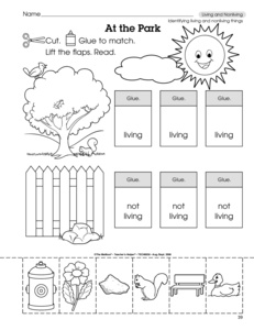 14 Best Images of Living Things Worksheets For