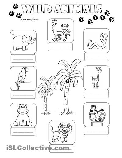 14 Best Images of Wild Animals Worksheets For Preschoolers