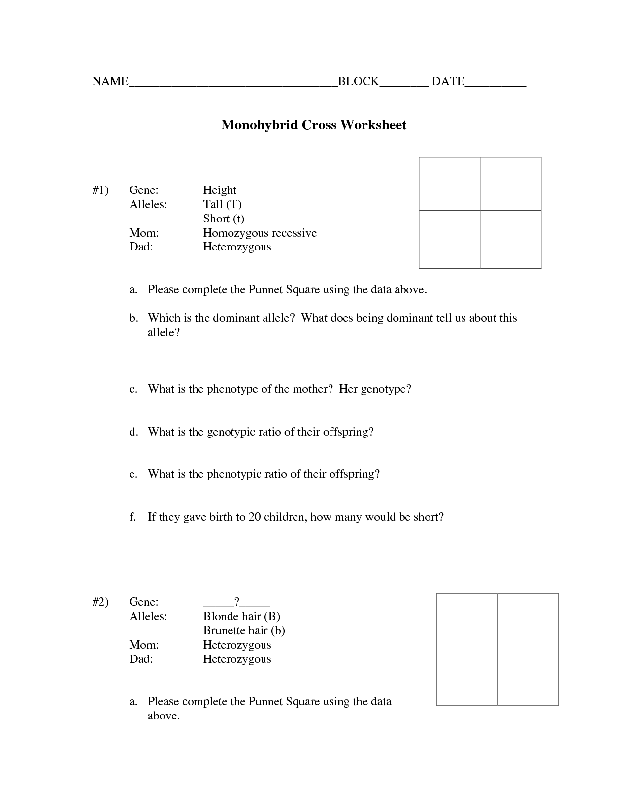 33 Monohybrid Crosses Practice Worksheet Answer Key