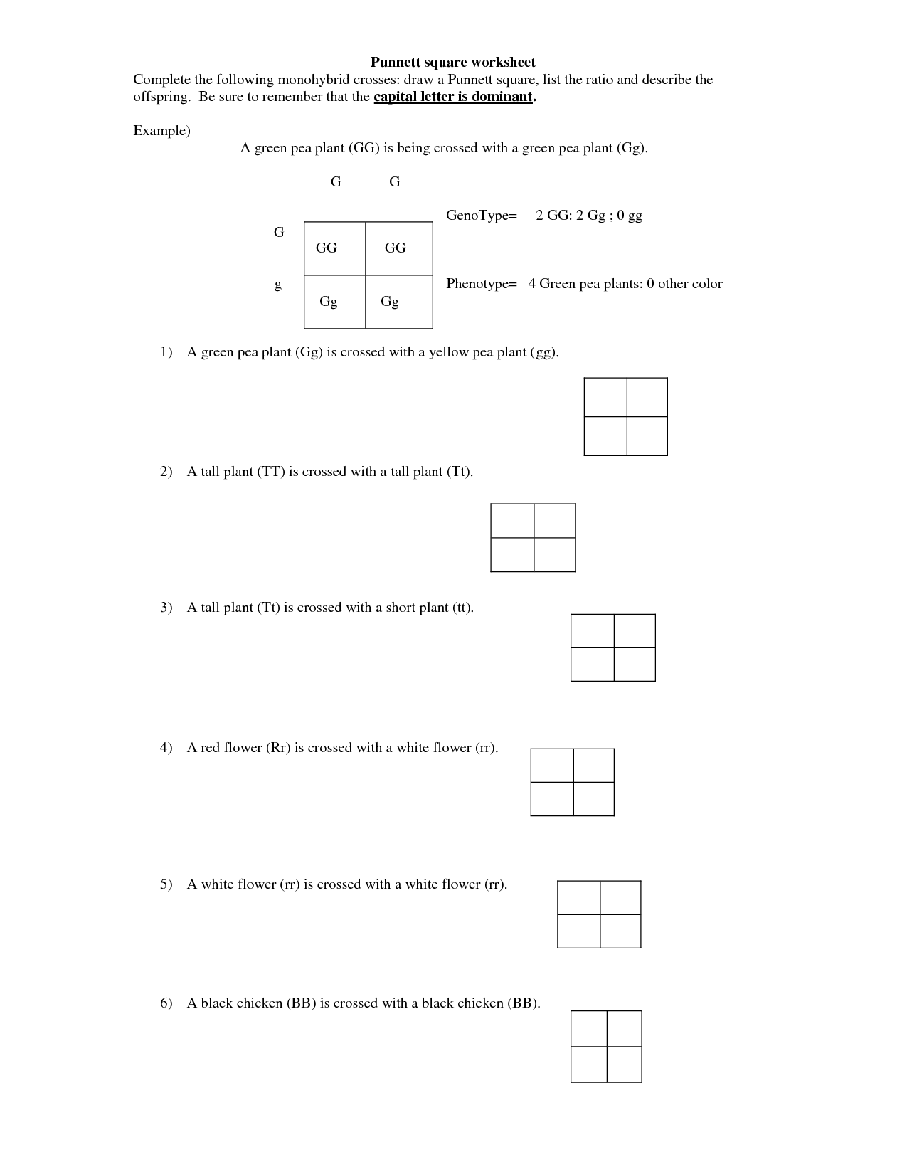 Spongebob Dihybrid Worksheet