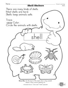 12 Best Images of Kindergarten Penguin Math Worksheets