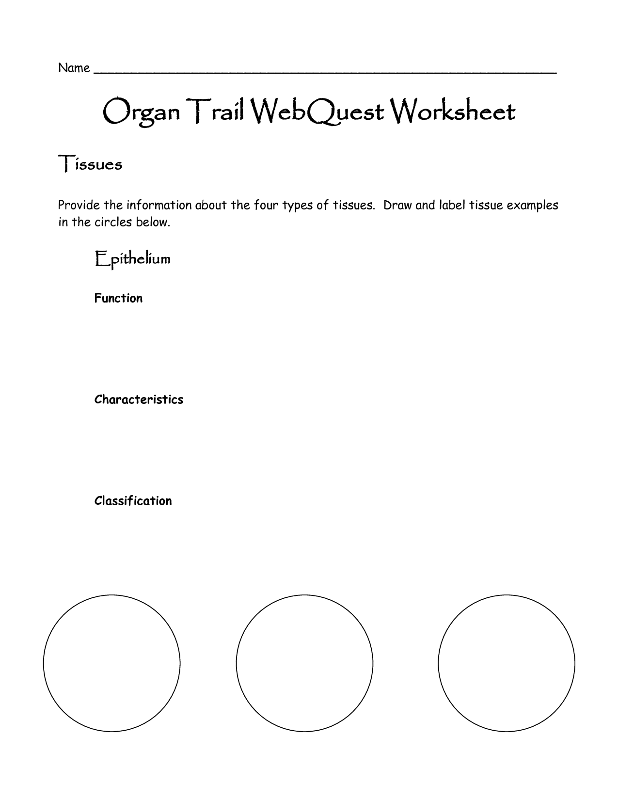 10 Best Images Of Website Research Worksheet