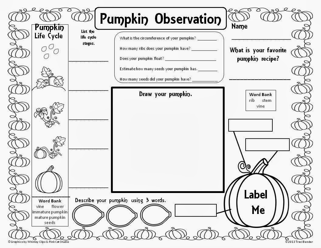 9 Best Images Of Pumpkin Measuring Worksheet