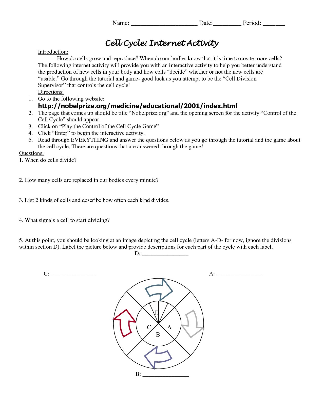 Cycle Worksheet