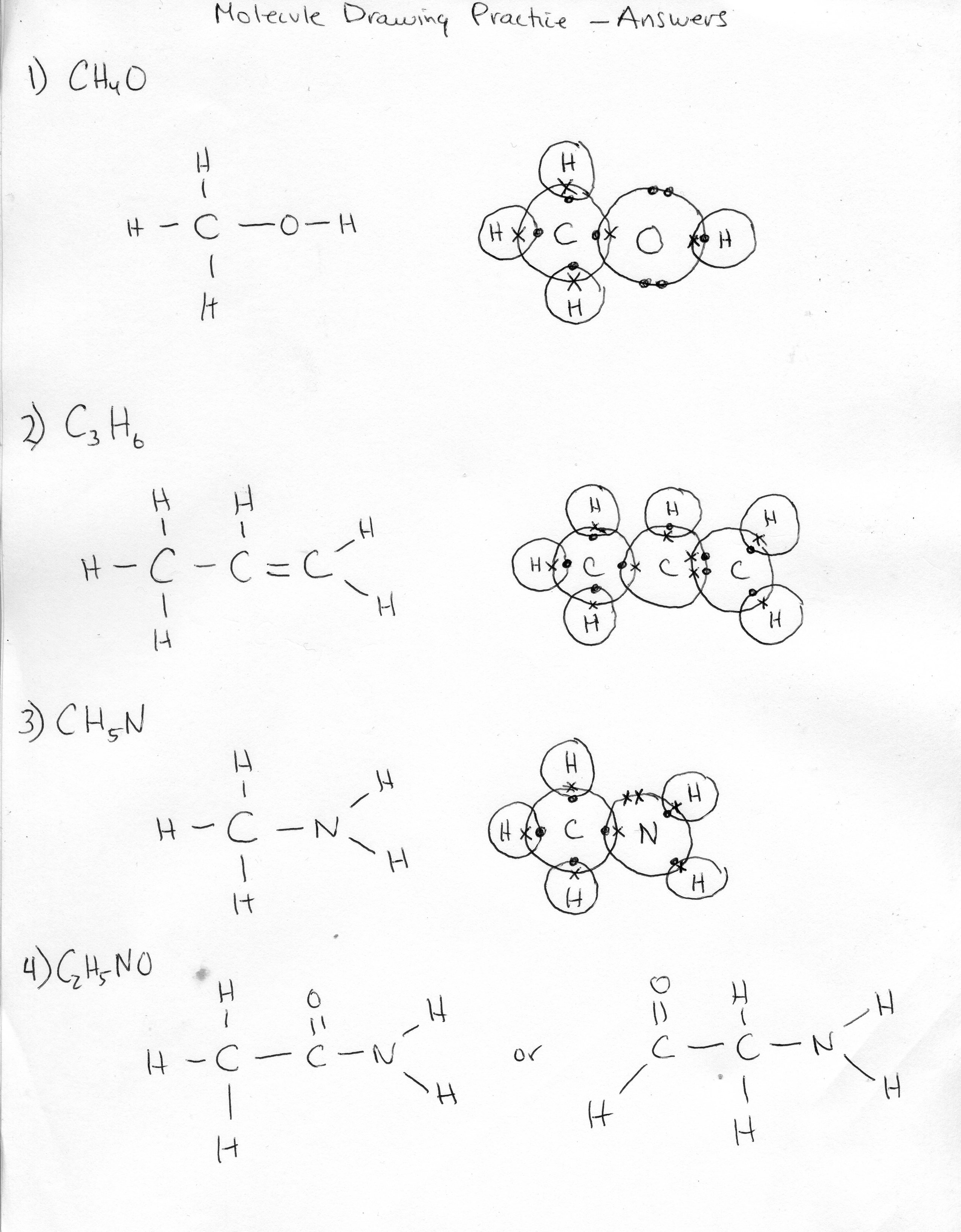13 Best Images Of Macromolecule Worksheet Practice