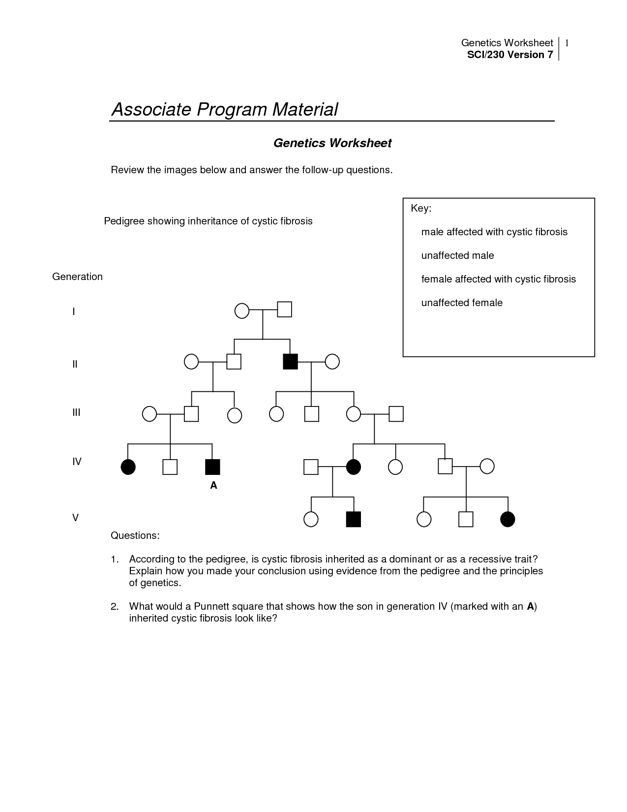 14 Best Images Of Pedigree Worksheet With Answer Key