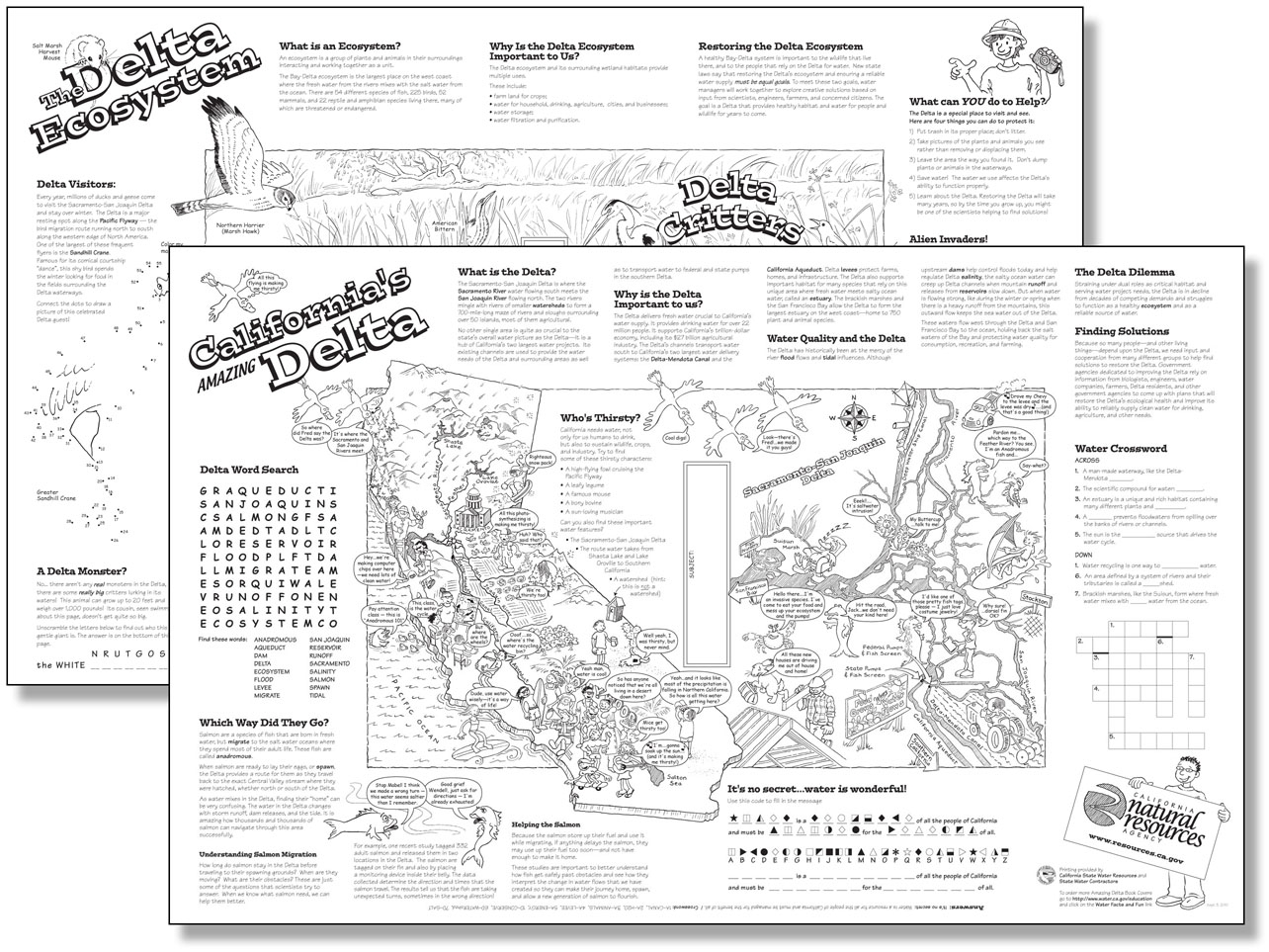 11 Best Images Of Printable Ecosystem Worksheets