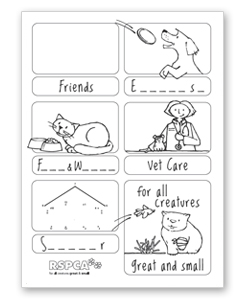15 Best Images of Basic Needs Of Animals Worksheets
