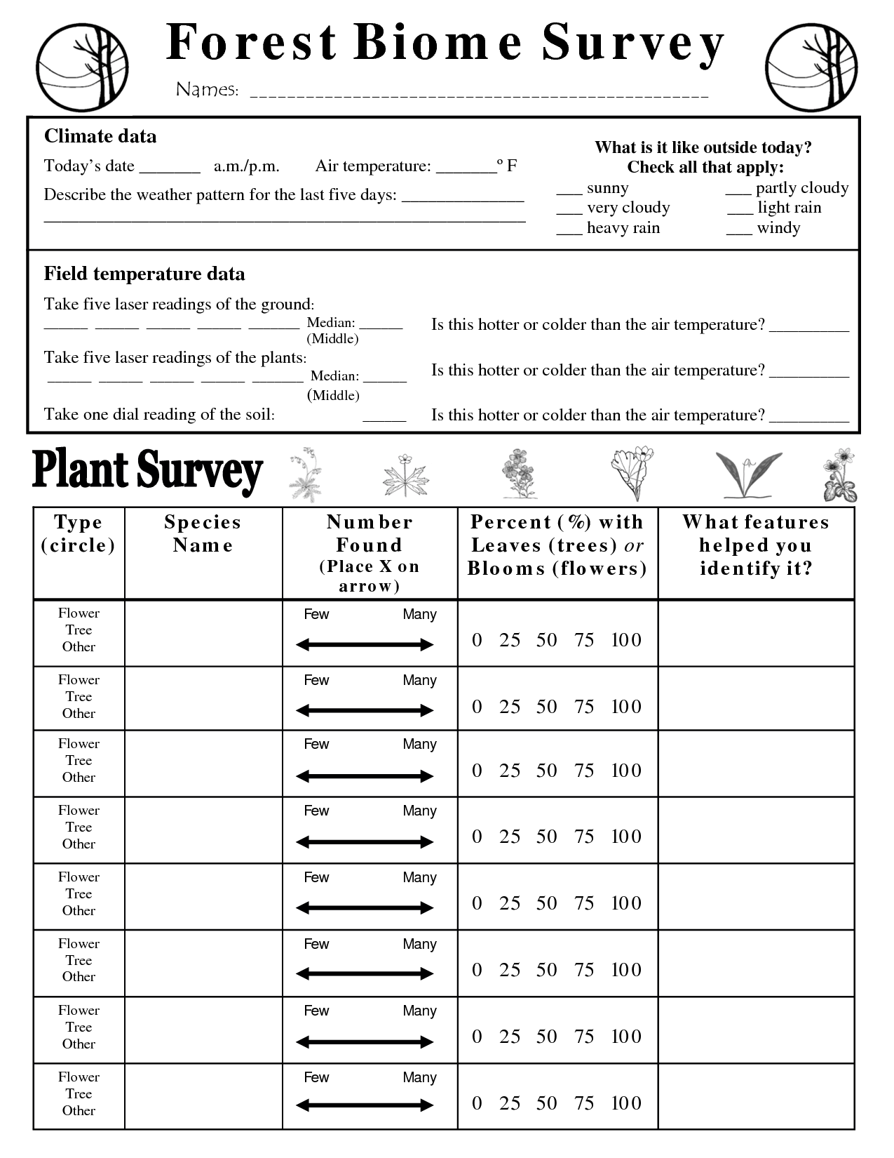 Ecosystems Worksheet High School
