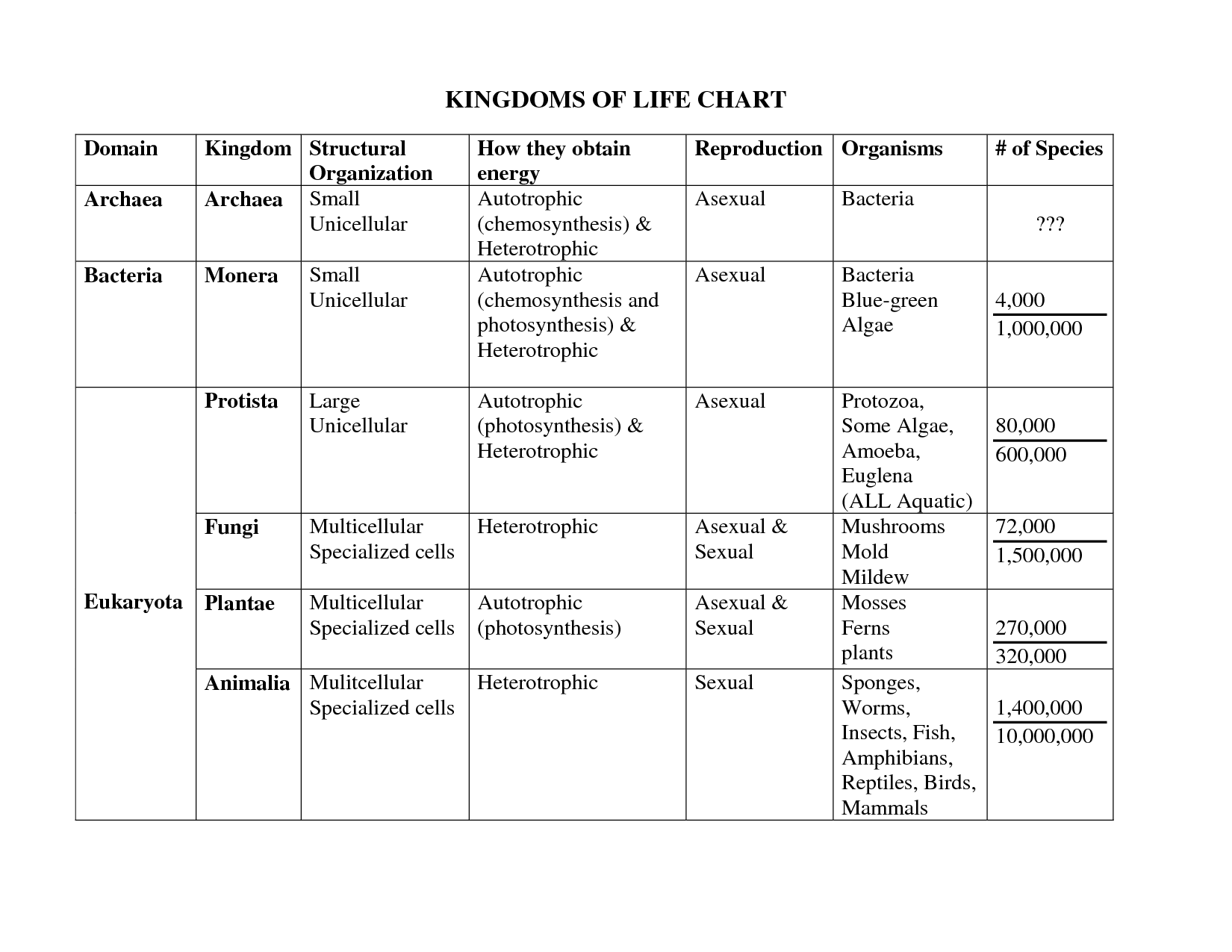 Example Of Kingdom In Biology