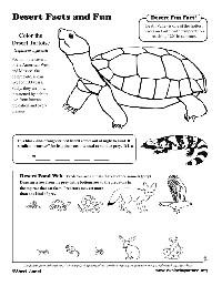 14 Best Images of More Than Worksheets For Kindergarten
