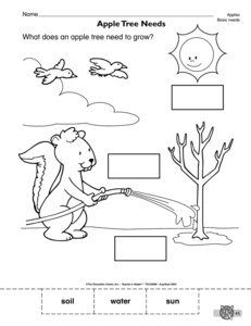 15 Best Images of Basic Needs Worksheets For Kindergarten
