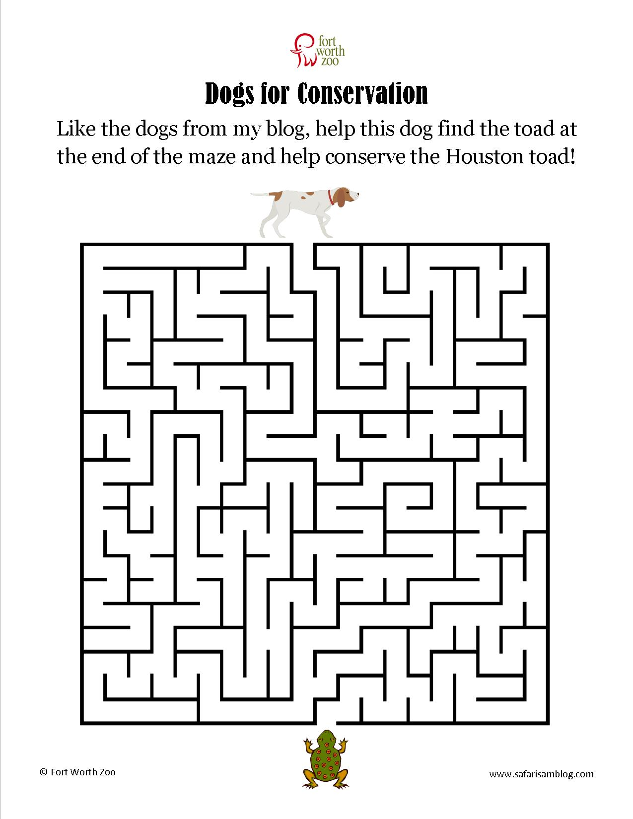 2nd Grade Maze Worksheet Printable
