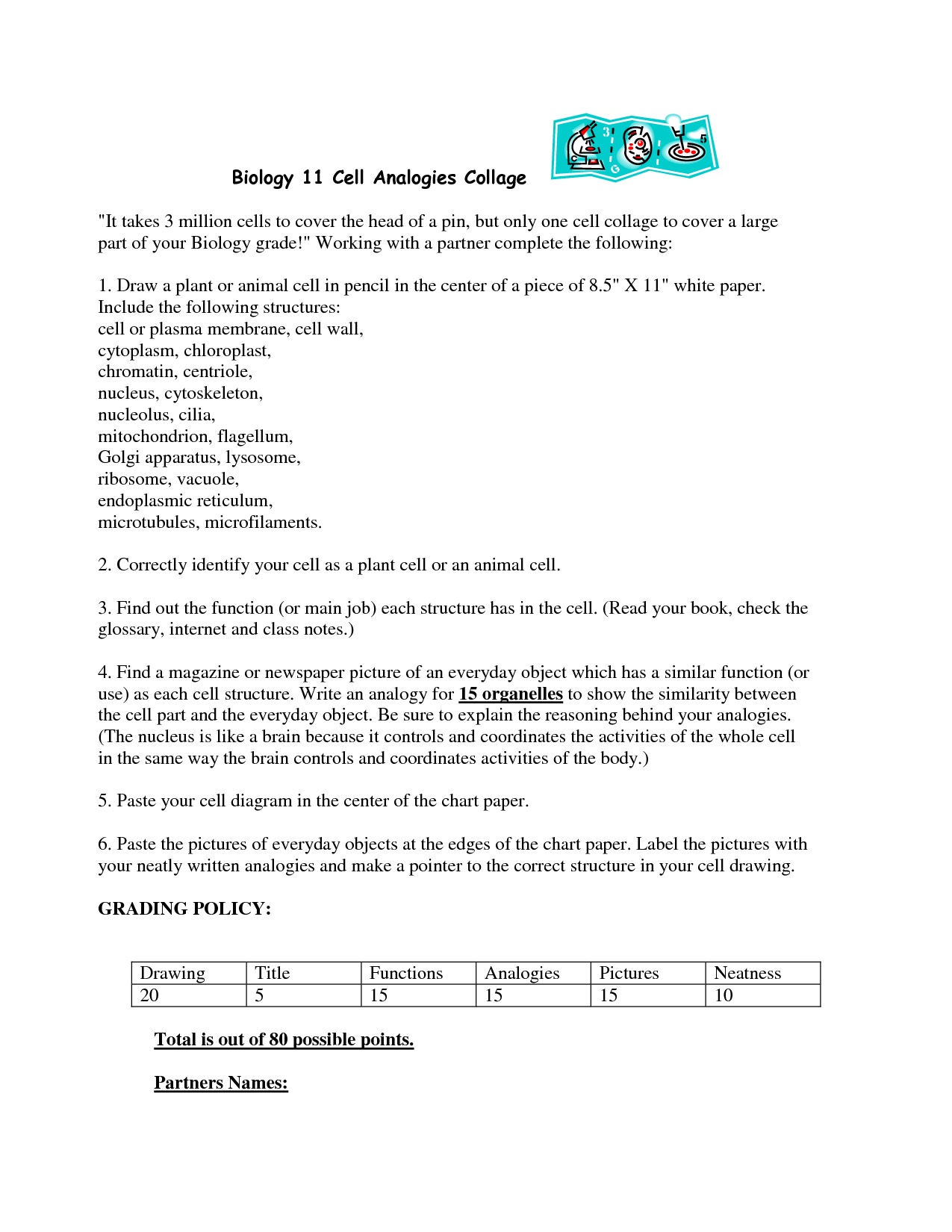 18 Best Images Of Cell City Worksheet Answer Key