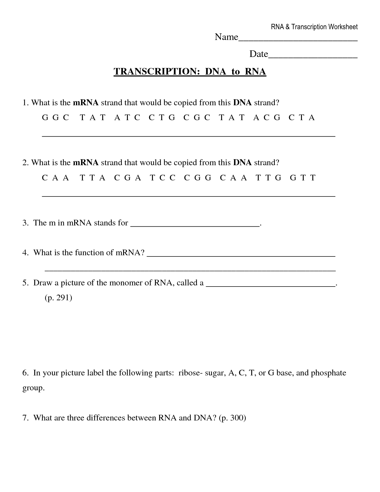 dna replication diagram worksheet stratocaster 5 way switch 15 best images of transcription and translation