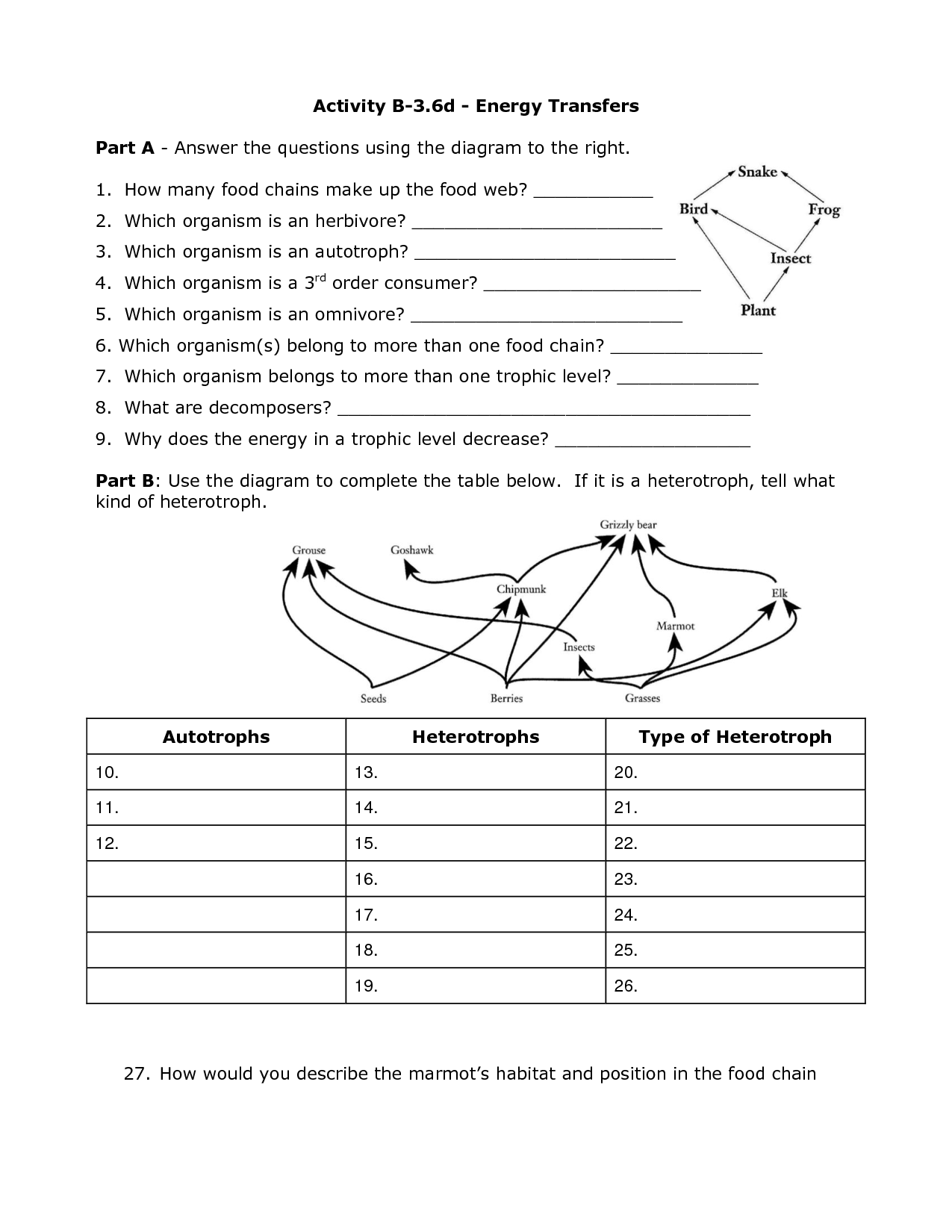 Kinetic And Potential Energy Worksheet 4th Grade