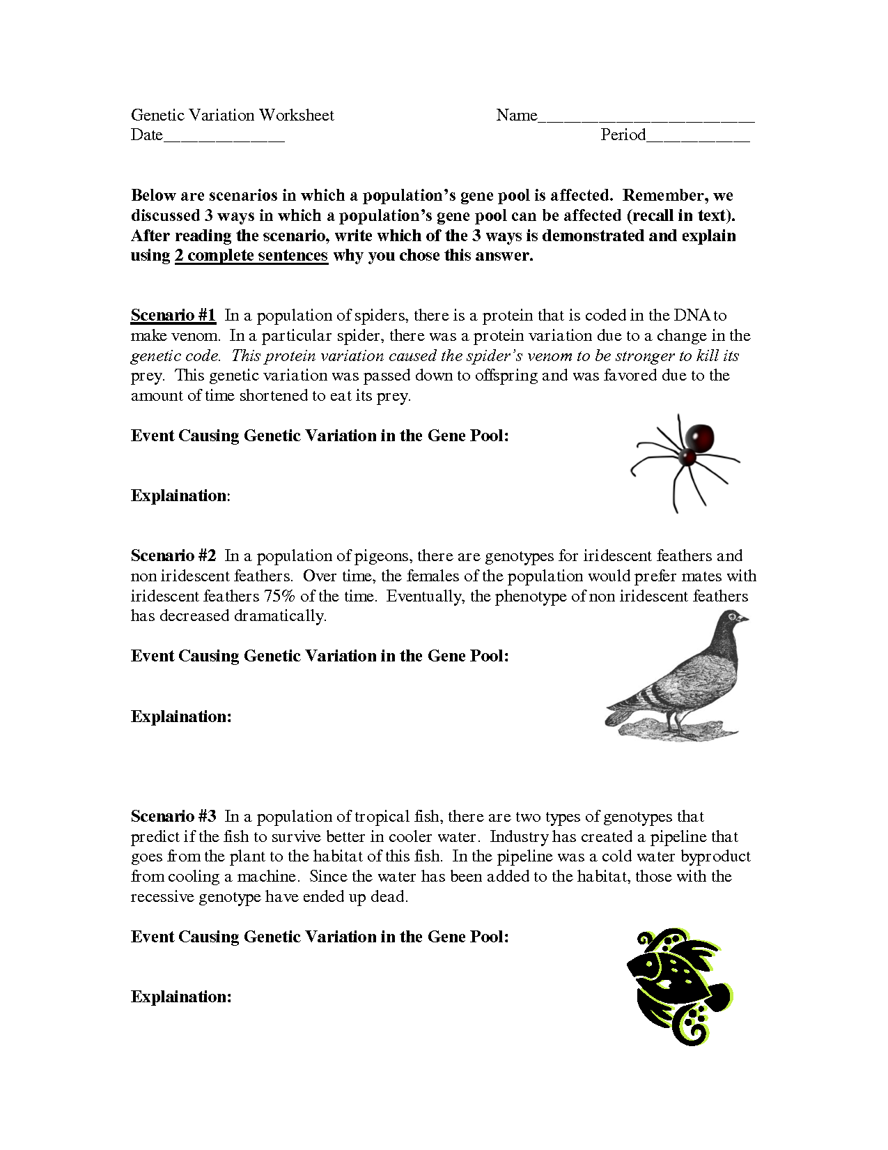 Mutations Practice Worksheet