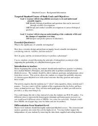 16 Best Images of Scientific Method Review Worksheet
