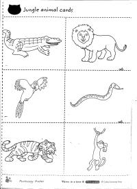 13 Best Images of 1st Grade Science Worksheets Animals ...