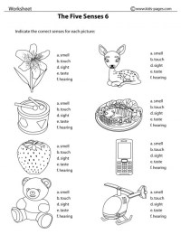 16 Best Images of Worksheets Our Five Senses - FREE ...