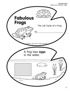14 Best Images of Frog Butterfly Life Cycle Worksheet