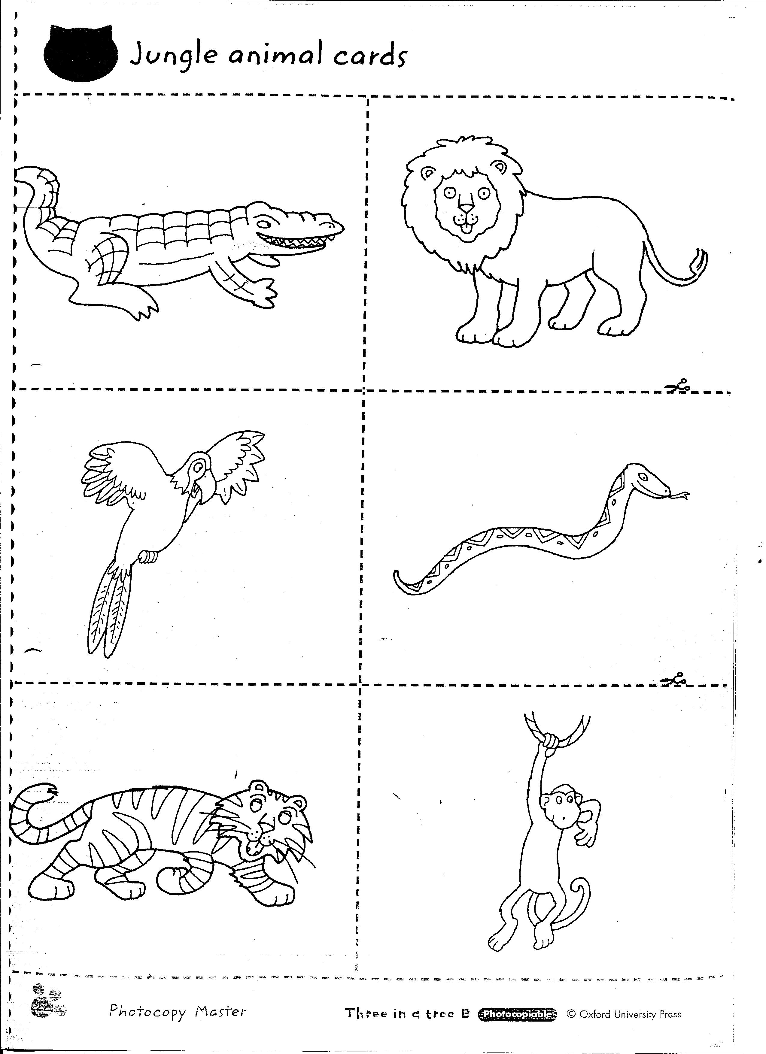 11 Best Images Of Science Worksheets Animals And Plants