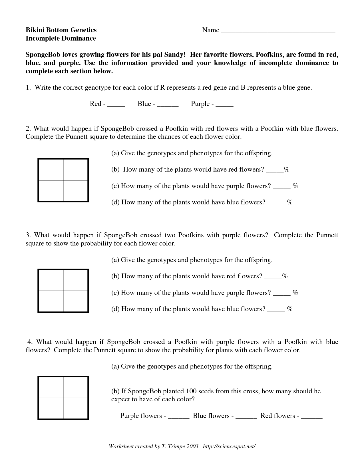 Oompa Loompa Genetics Worksheet Answers | Printable ...